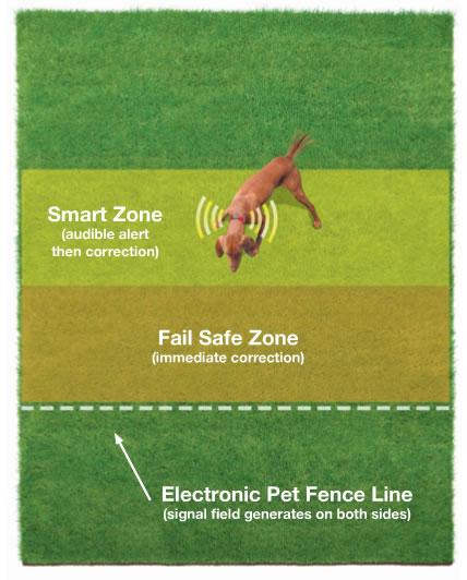 underground electric dog fence 1